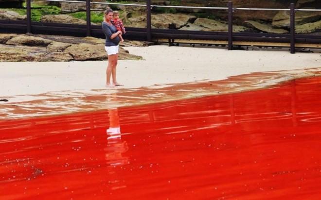 Кровавое море Сиднея