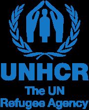 ООН зафиксировало рекордное число беженцев