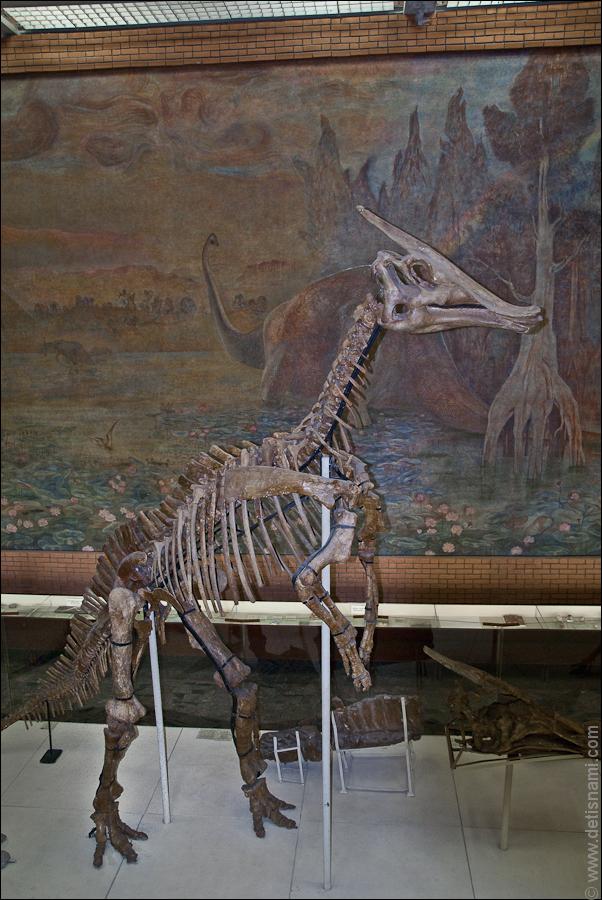 Утконосые динозавры обладали отличными зубами