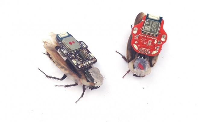 С помощью iPhone можно  заставит тараканов плясать под вашу дудку.