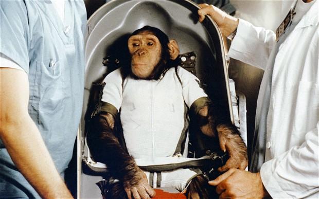 Иран удивил мир обезьяной в космосе и автоматом для отрубание рук.