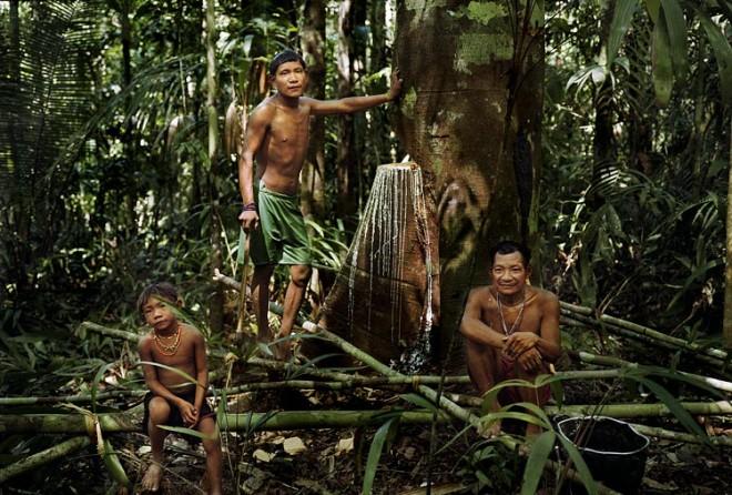 Племя индейцев Пираха самый счастливый народ на земле