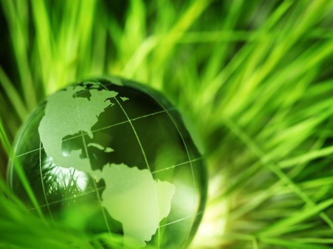 Green-Earth-Wlp-II-tangledwing