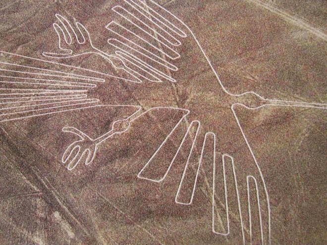 Новая загадка в тайных рисунках плато Наска.