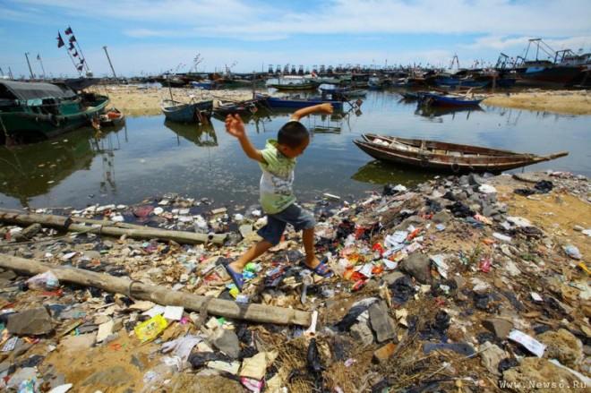 Основные причины экологического кризиса