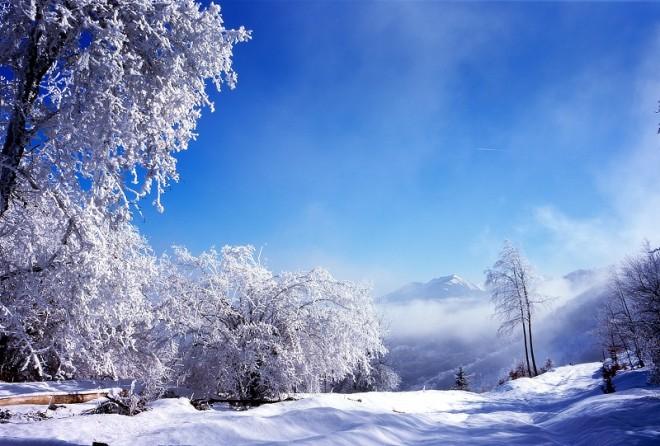 Зима 2013-2014, прогноз синоптиков и медиков