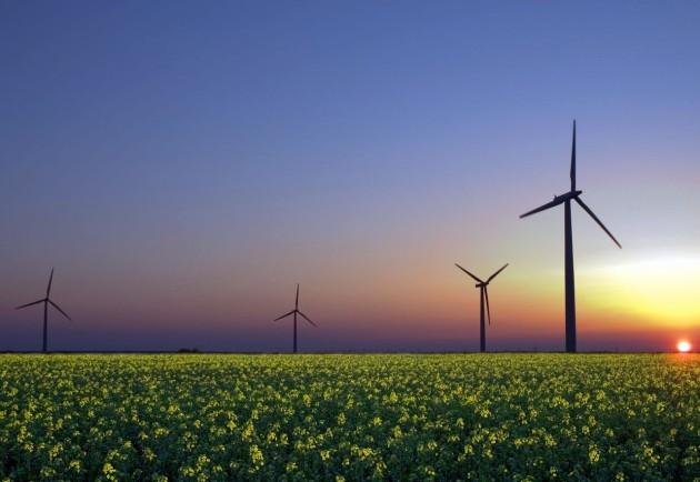 Ветровые парки обеспечат Украине энергетическую независимость.