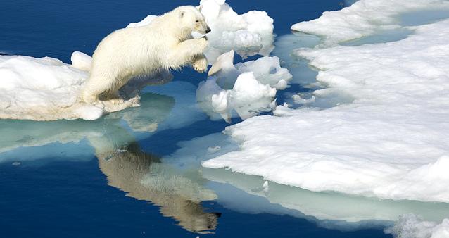 Глобальное потепление делает фрукты слаще, а людей грозит превратить в карликов